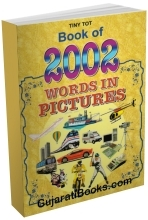 Book Of 2002 Words In Pictures (English)